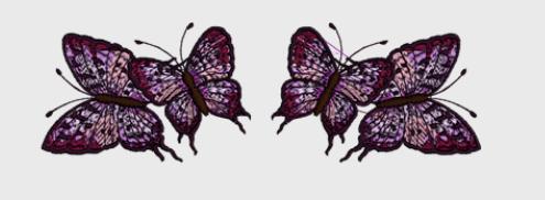 Nr.4 2xSommerfugl stor ramme