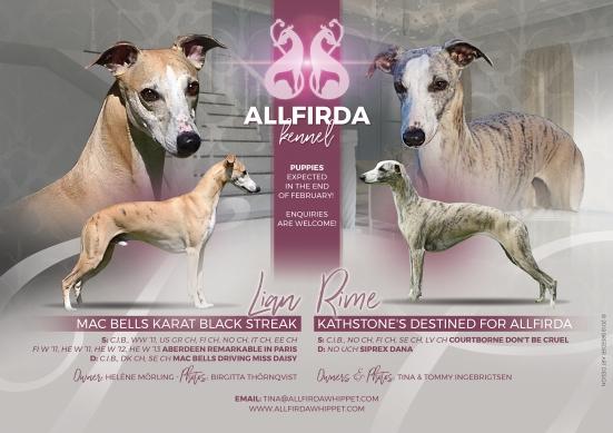 Allfirda Announcement (1)