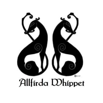 copyright allfirdalogo